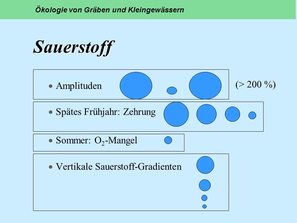 Sauerstoff Amplituden Spätes Frühjahr: Zehrung Sommer: O 2 -Mangel Vertikale Sauerstoff-Gradienten Ökologie von Gräben und Kleingewässern (> 200 %)