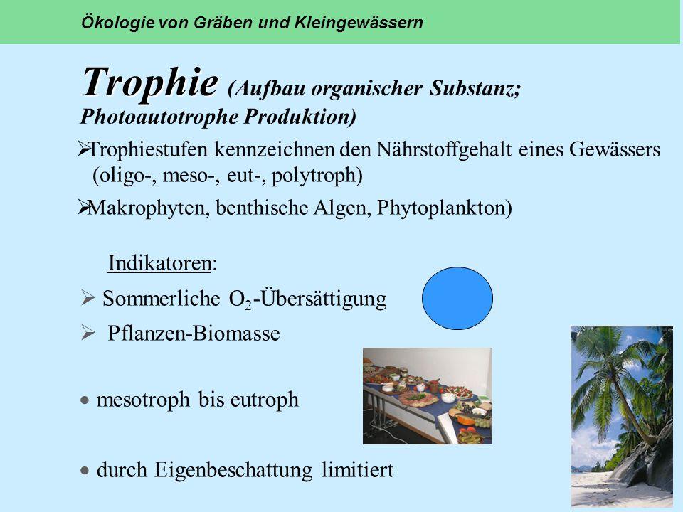 Trophie Trophie (Aufbau organischer Substanz; Photoautotrophe Produktion) Indikatoren: Sommerliche O 2 -Übersättigung Pflanzen-Biomasse mesotroph bis