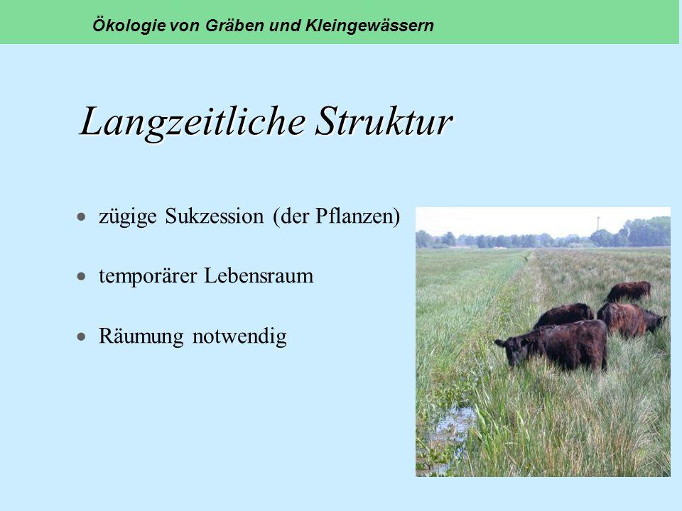 Langzeitliche Struktur zügige Sukzession (der Pflanzen) temporärer Lebensraum Räumung notwendig Ökologie von Gräben und Kleingewässern