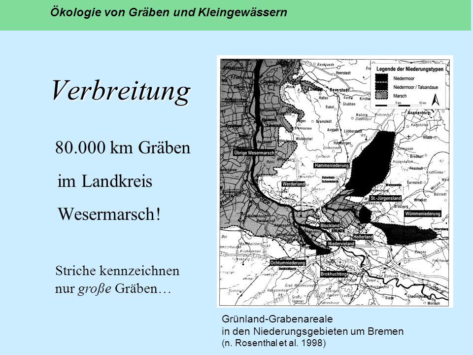 Verbreitung 80.000 km Gräben im Landkreis Wesermarsch! Ökologie von Gräben und Kleingewässern Grünland-Grabenareale in den Niederungsgebieten um Breme