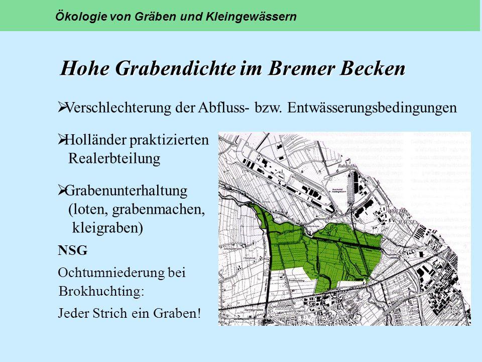 Hohe Grabendichte im Bremer Becken NSG Ochtumniederung bei Brokhuchting: Jeder Strich ein Graben! Ökologie von Gräben und Kleingewässern Verschlechter