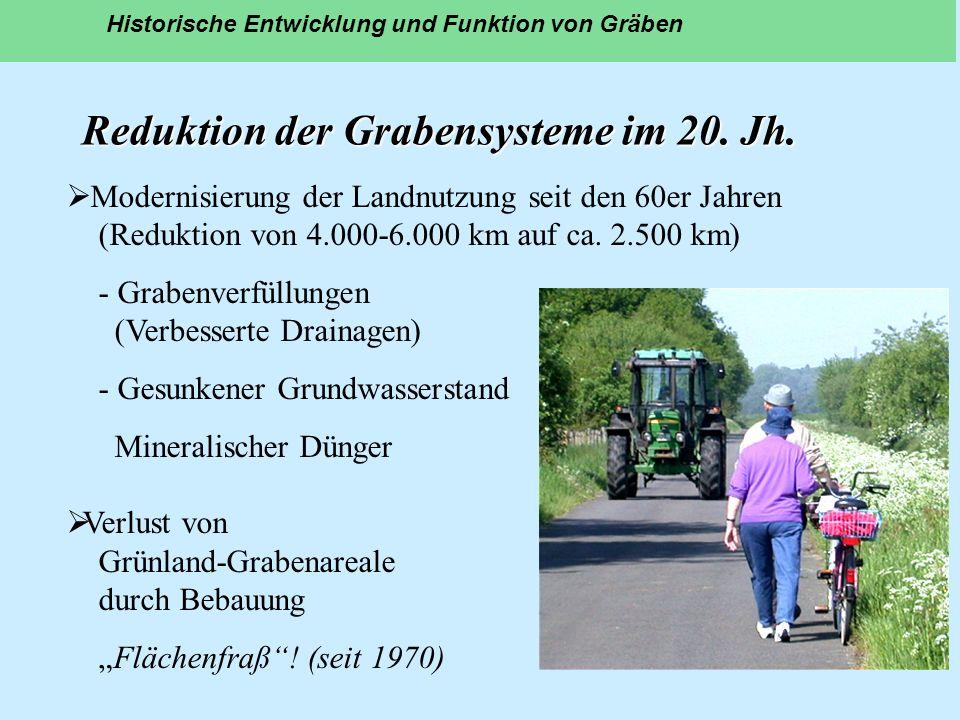Reduktion der Grabensysteme im 20. Jh. Historische Entwicklung und Funktion von Gräben Modernisierung der Landnutzung seit den 60er Jahren (Reduktion