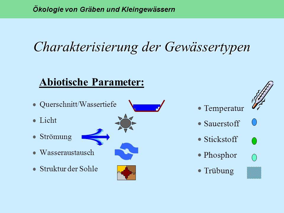 Charakterisierung der Gewässertypen Charakterisierung der Gewässertypen Querschnitt/Wassertiefe Licht Strömung Wasseraustausch Struktur der Sohle Ökol