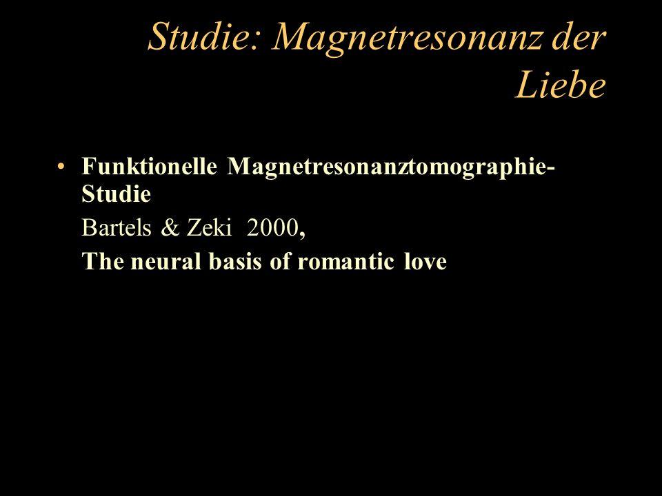 Studie: Magnetresonanz der Liebe Funktionelle Magnetresonanztomographie- Studie Bartels & Zeki 2000, The neural basis of romantic love