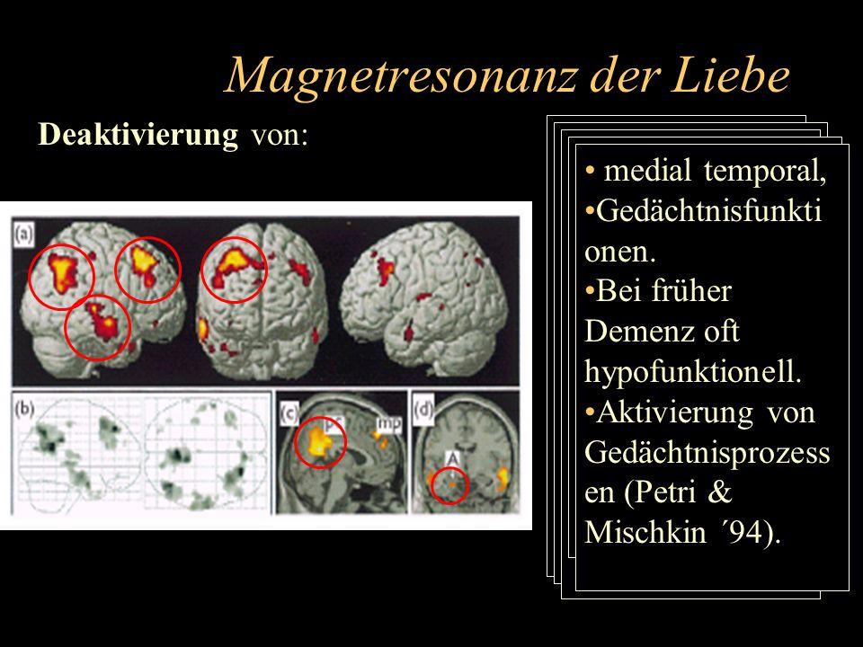 Magnetresonanz der Liebe Deaktivierung von: hinteres Cingulum Erkennen der eigenen und anderer Menschen Gefühle, auch an Vermittlung von Schmerzempfin