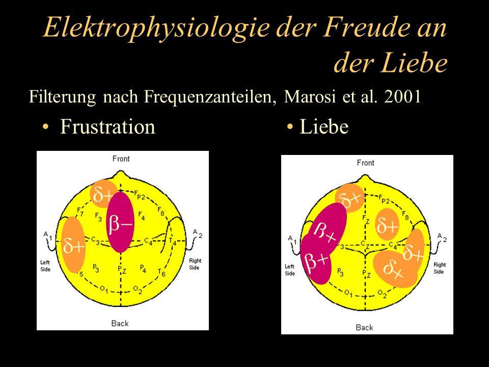 Elektrophysiologie der Freude an der Liebe Frustration Liebe Filterung nach Frequenzanteilen, Marosi et al. 2001
