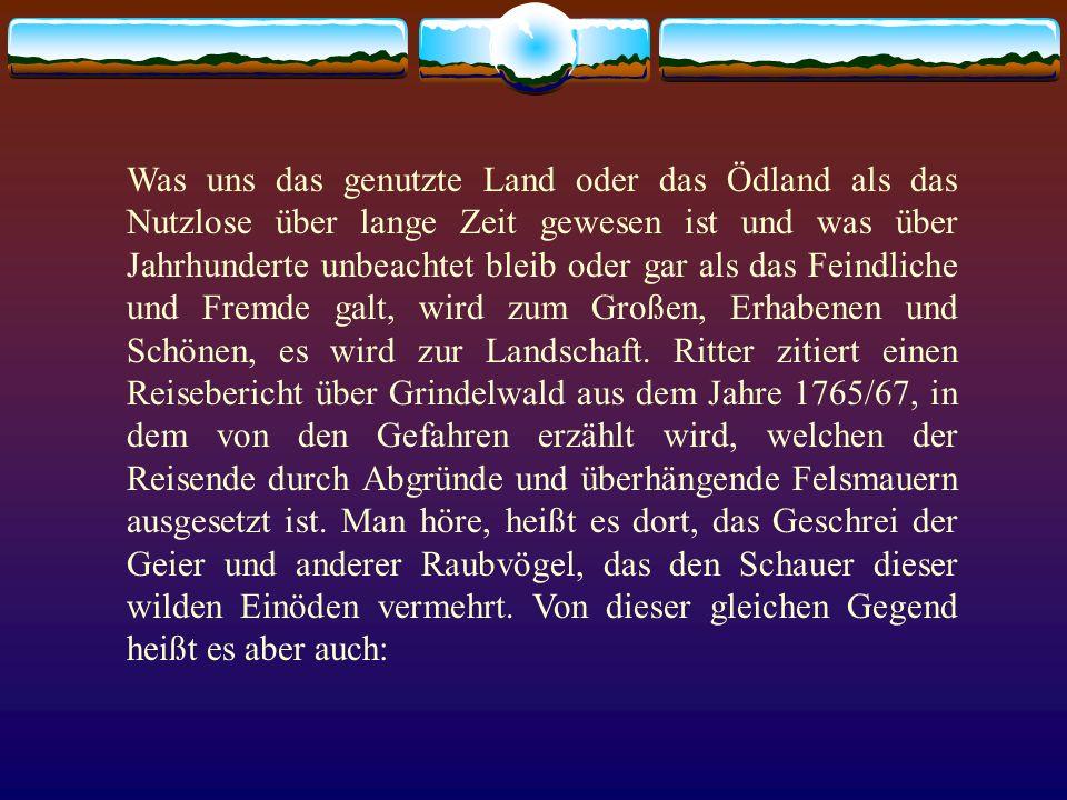 Was uns das genutzte Land oder das Ödland als das Nutzlose über lange Zeit gewesen ist und was über Jahrhunderte unbeachtet bleib oder gar als das Fei