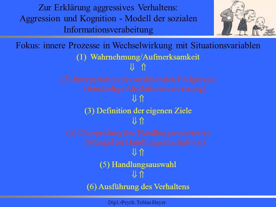 Dipl.-Psych. Tobias Hayer Zur Erklärung aggressives Verhaltens: Aggression und Kognition - Modell der sozialen Informationsverabeitung Fokus: innere P