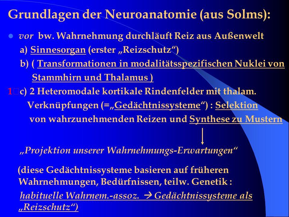 dann: unimodale Rindenfelder des posterioren Kortex bewusste Wahrnehmung dieser äußeren Reize (Sehen, Hören, taktile Wahrnehmung, Kinästhetik) 2 ( Wahrnehmung von Reizen aus dem Inneren der Psyche : im limbischen Kortex ) 3 Heteromodales kortikales Rindenfeld der rechten Hemisphäre = Gedächtnis von Ganzobjektrepräsentationen (Dinge); Heteromodales kortikales Rindenfeld der linken Hemisphäre = audioverbales Gedächtnis (=symbolische Retranskription von Dingen in Worte ).