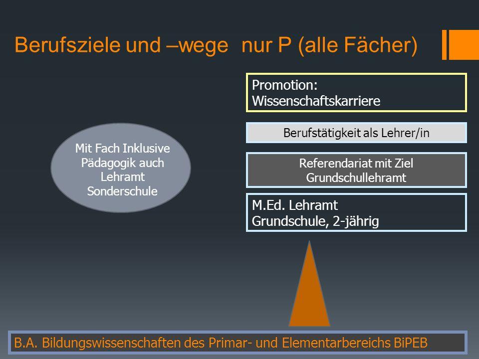 Berufsziele und –wege nur P (alle Fächer) B.A.