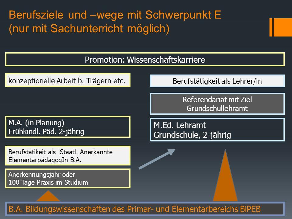 Berufsziele und –wege mit Schwerpunkt E (nur mit Sachunterricht möglich) B.A.