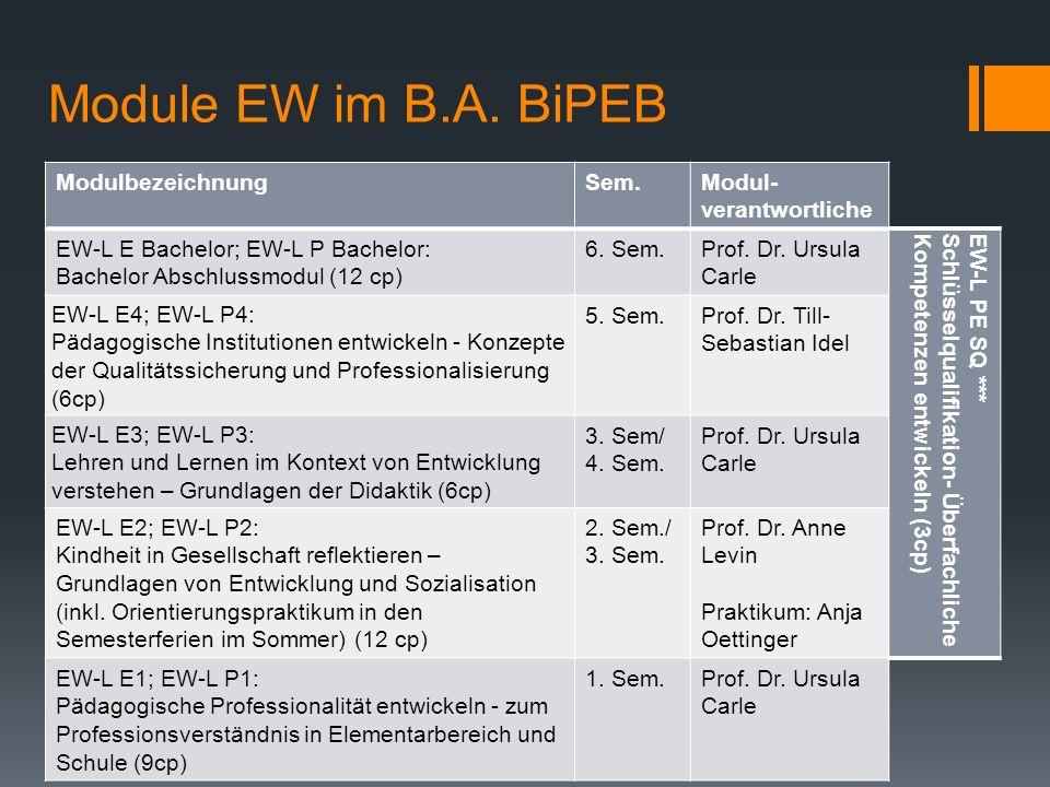 Module EW im B.A.