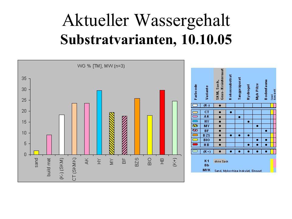Aktueller Wassergehalt Substratvarianten, 10.10.05