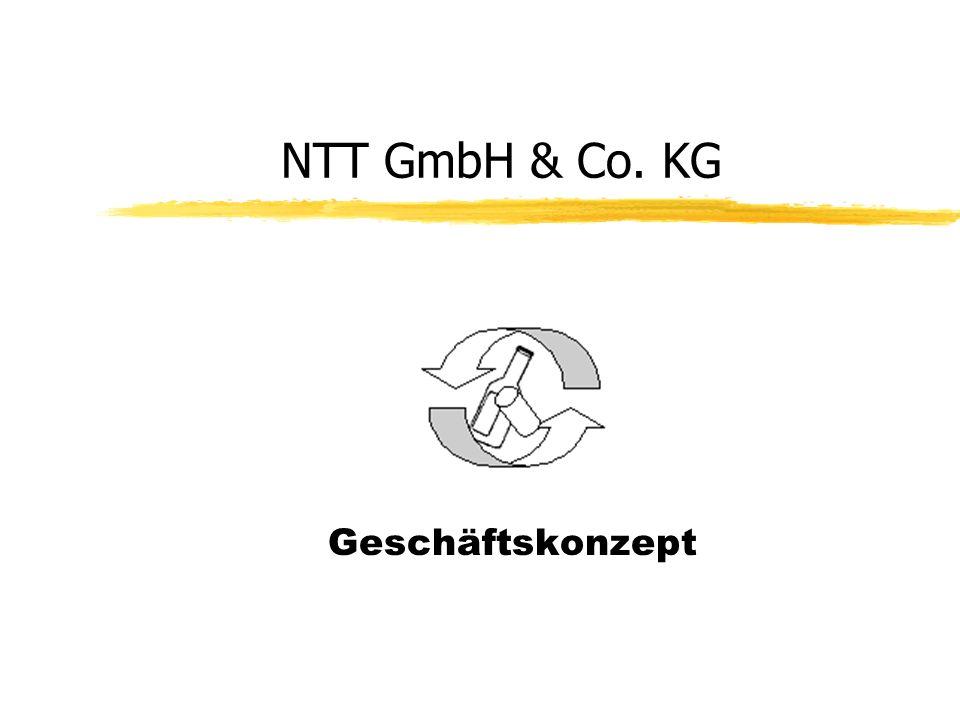 NTT GmbH & Co. KG Geschäftskonzept