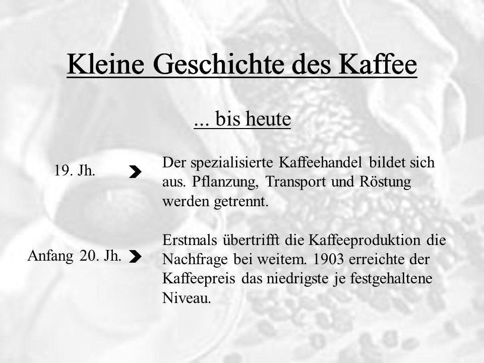 ... bis heute Kleine Geschichte des Kaffee 19. Jh. Anfang 20. Jh. Der spezialisierte Kaffeehandel bildet sich aus. Pflanzung, Transport und Röstung we
