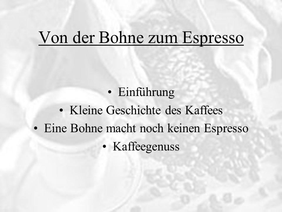 Von der Bohne zum Espresso Einführung Kleine Geschichte des Kaffees Eine Bohne macht noch keinen Espresso Kaffeegenuss