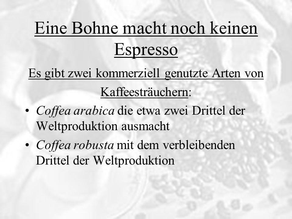 Eine Bohne macht noch keinen Espresso Es gibt zwei kommerziell genutzte Arten von Kaffeesträuchern: Coffea arabica die etwa zwei Drittel der Weltprodu