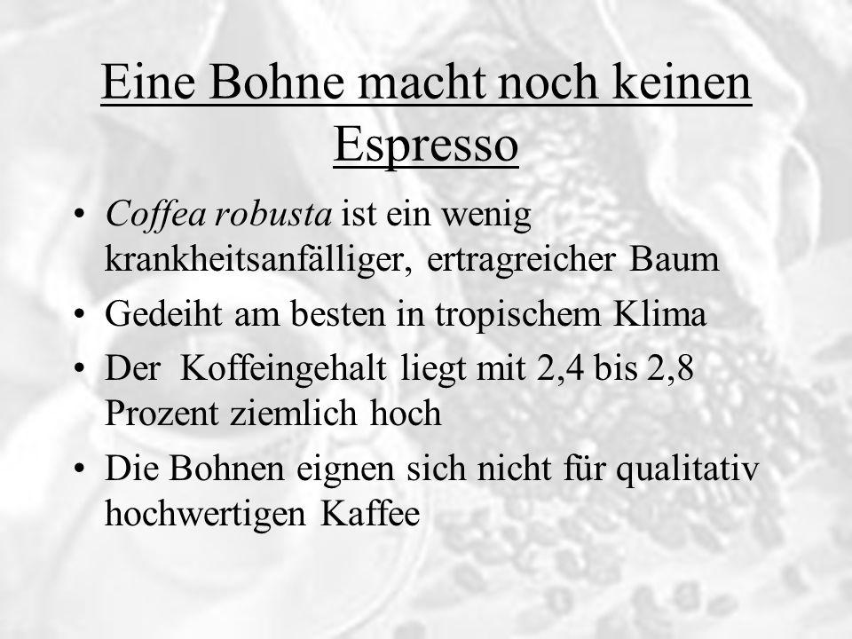 Eine Bohne macht noch keinen Espresso Coffea robusta ist ein wenig krankheitsanfälliger, ertragreicher Baum Gedeiht am besten in tropischem Klima Der