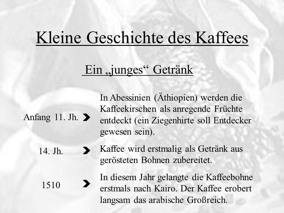 Ein junges Getränk Kleine Geschichte des Kaffees Anfang 11. Jh. 14. Jh. 1510 In Abessinien (Äthiopien) werden die Kaffeekirschen als anregende Früchte