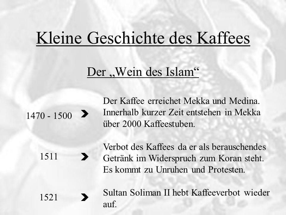 Kleine Geschichte des Kaffees 1470 - 1500 1511 1521 Der Wein des Islam Der Kaffee erreichet Mekka und Medina. Innerhalb kurzer Zeit entstehen in Mekka