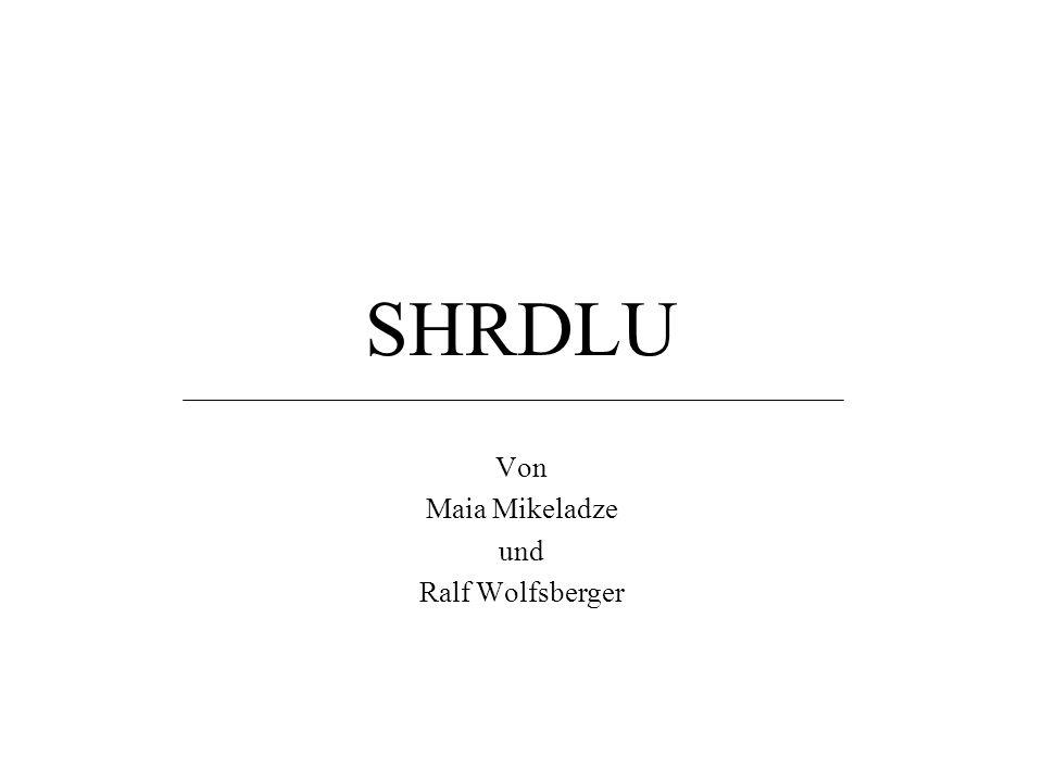 SHRDLU Von Maia Mikeladze und Ralf Wolfsberger