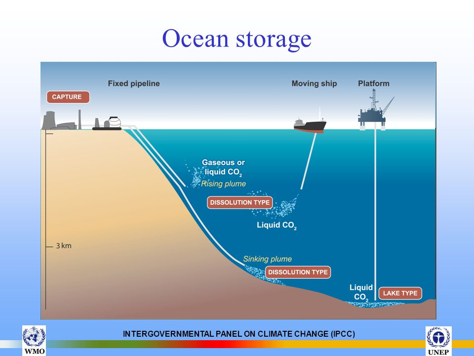 INTERGOVERNMENTAL PANEL ON CLIMATE CHANGE (IPCC) Ocean storage
