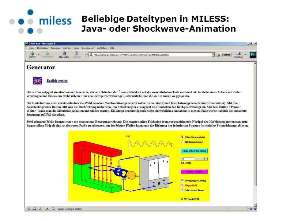 Beliebige Dateitypen in MILESS: Java- oder Shockwave-Animation