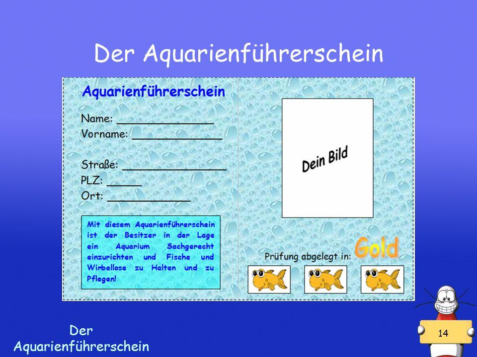 Der Aquarienführerschein 14 Der Aquarienführerschein
