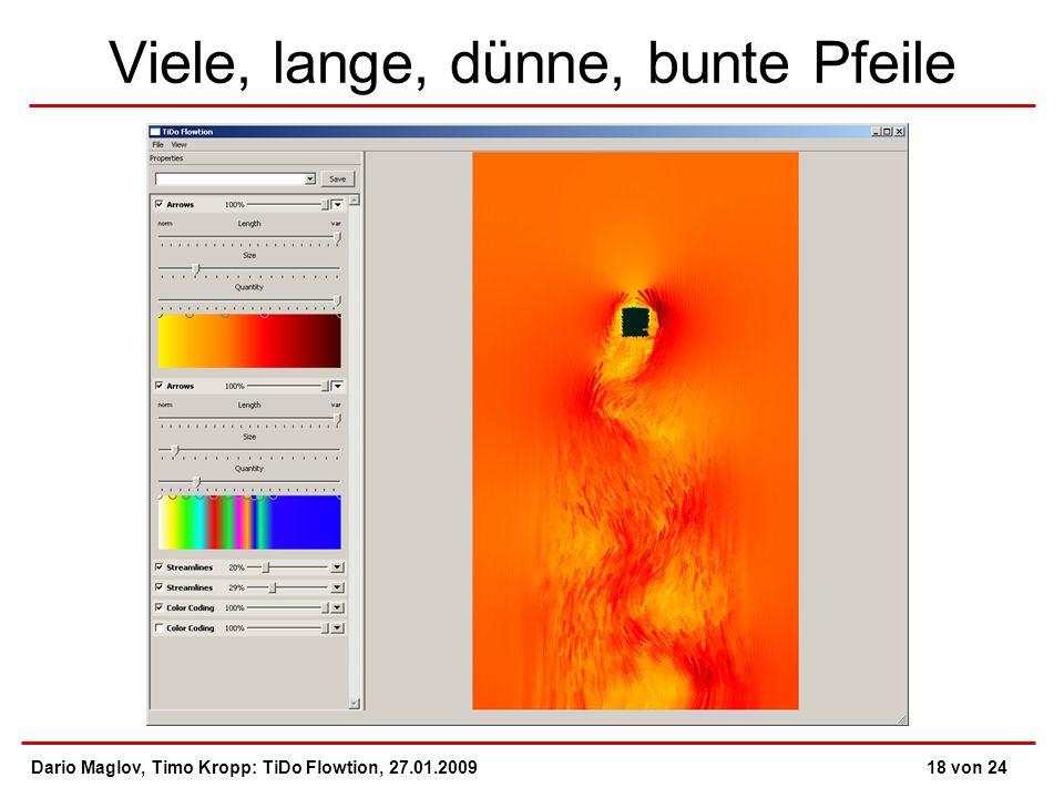 Viele, lange, dünne, bunte Pfeile Dario Maglov, Timo Kropp: TiDo Flowtion, 27.01.200918 von 24