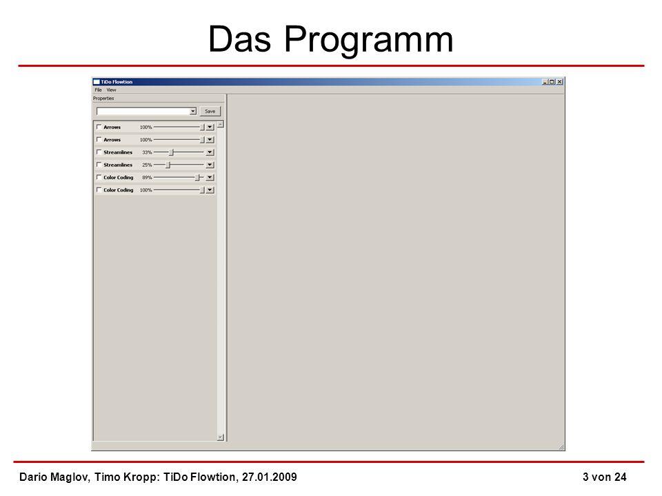 Das Programm Dario Maglov, Timo Kropp: TiDo Flowtion, 27.01.20093 von 24