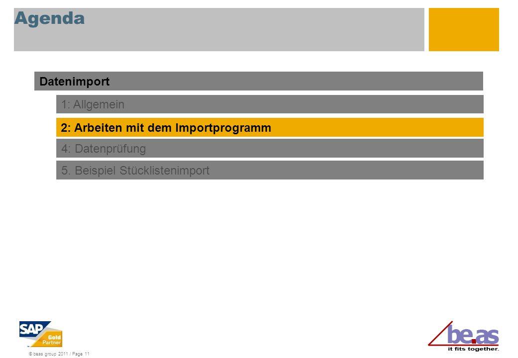 © beas group 2011 / Page 11 Agenda Datenimport 1: Allgemein 2: Arbeiten mit dem Importprogramm 4: Datenprüfung 5.