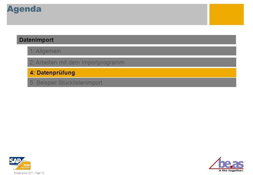 © beas group 2011 / Page 18 Agenda Datenimport 1: Allgemein 2: Arbeiten mit dem Importprogramm 4: Datenprüfung 5: Beispiel Stücklistenimport