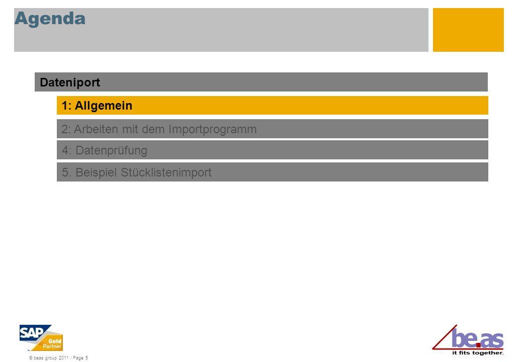© beas group 2011 / Page 5 Agenda Dateniport 1: Allgemein 2: Arbeiten mit dem Importprogramm 4: Datenprüfung 5.