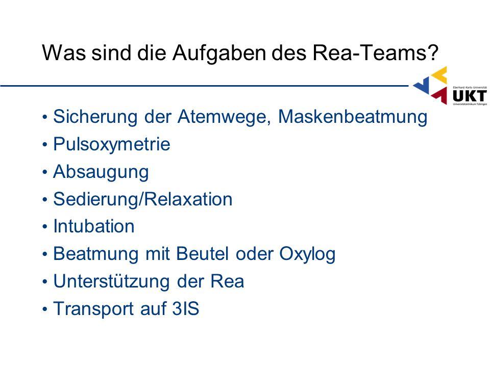 Was sind die Aufgaben des Rea-Teams.