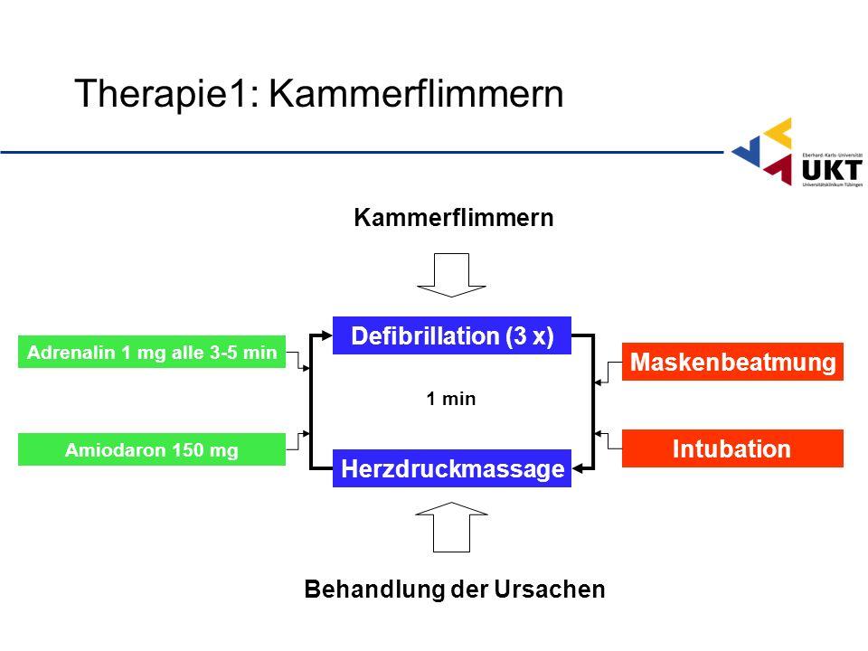 Therapie1: Kammerflimmern Defibrillation (3 x) Maskenbeatmung Herzdruckmassage Adrenalin 1 mg alle 3-5 min 1 min Amiodaron 150 mg Intubation Kammerflimmern Behandlung der Ursachen