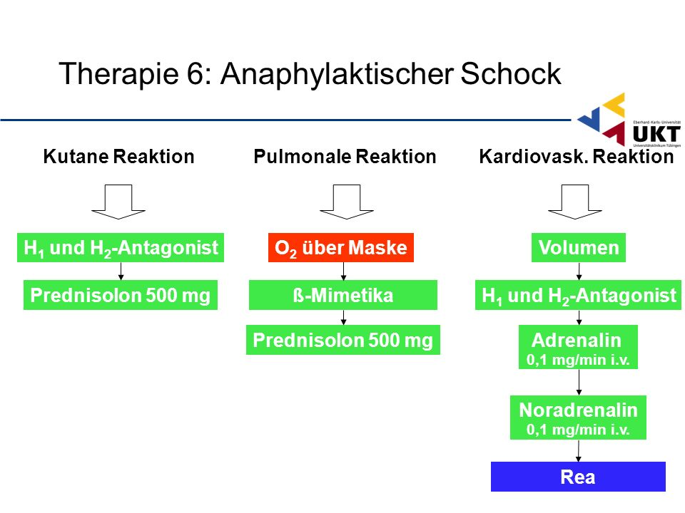 VolumenH 1 und H 2 -Antagonist Rea Kutane Reaktion Adrenalin 0,1 mg/min i.v.