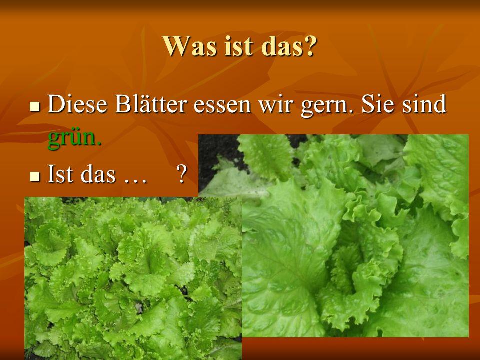 Was ist das? Diese Blätter essen wir gern. Sie sind grün. Diese Blätter essen wir gern. Sie sind grün. Ist das … ? Ist das … ?