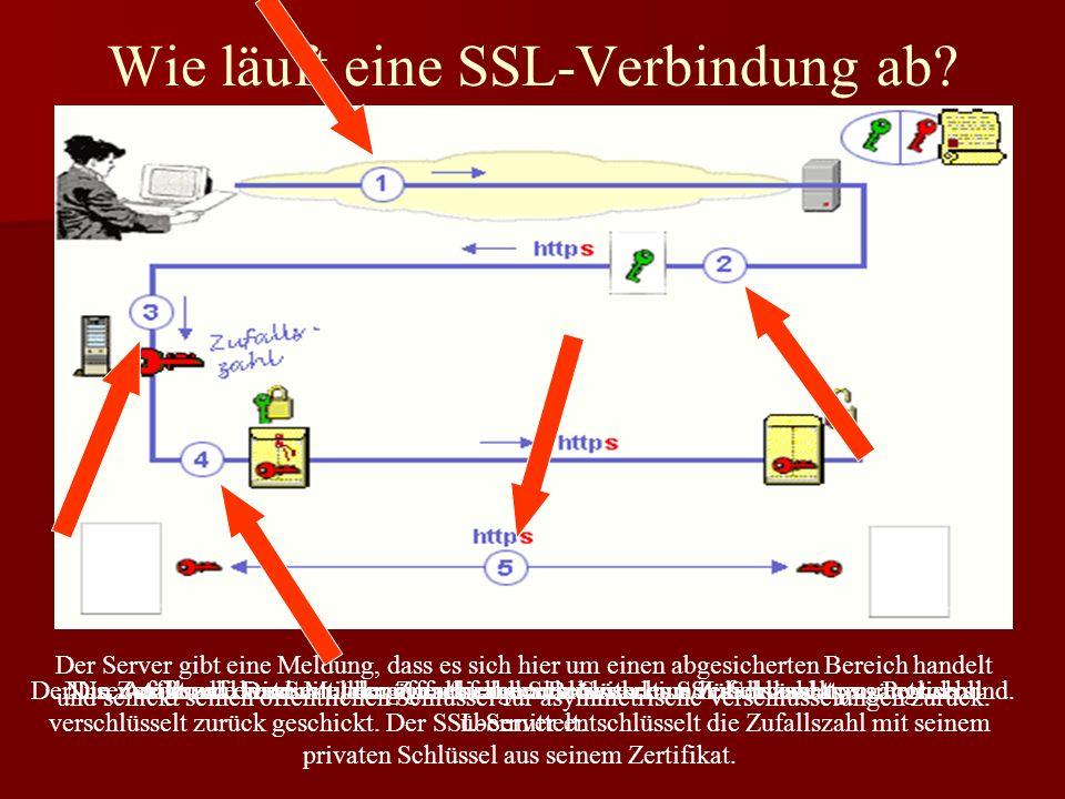 Der Server gibt eine Meldung, dass es sich hier um einen abgesicherten Bereich handelt und schickt seinen öffentlichen Schlüssel für asymmetrische Ver