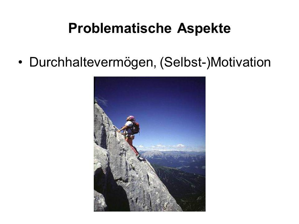 Problematische Aspekte Durchhaltevermögen, (Selbst-)Motivation