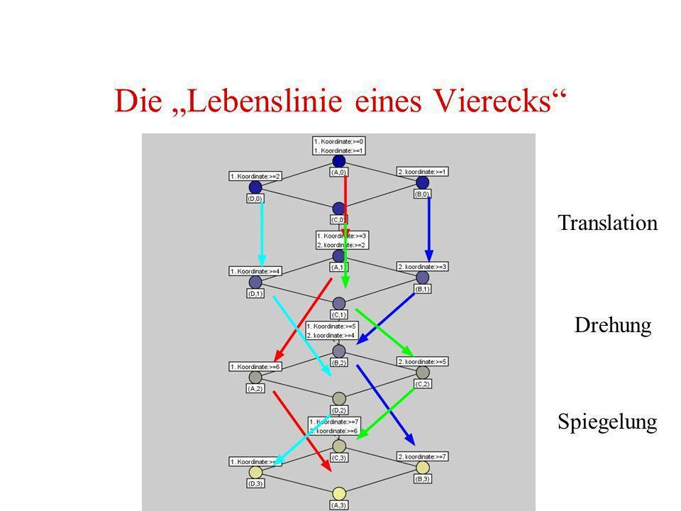 Die Lebenslinie eines Vierecks Translation Drehung Spiegelung