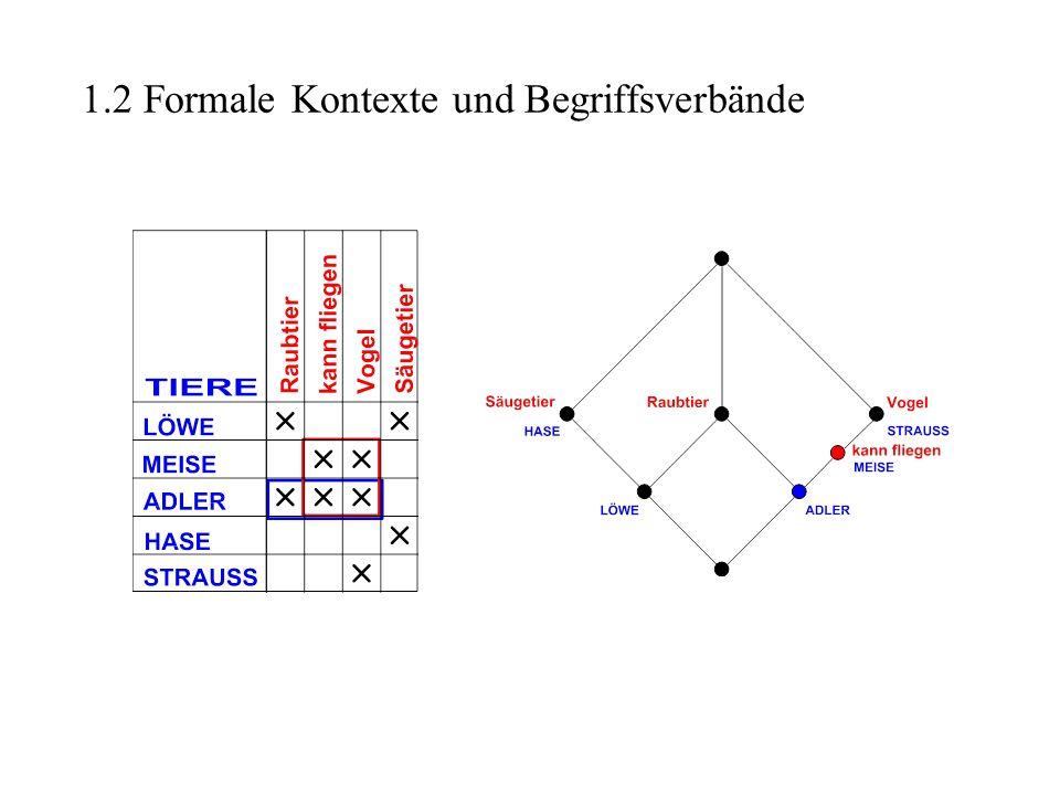 Ein kurzer Blick auf die mathematische Beschreibung der Begrifflichen Systemtheorie Definition: Begriffliches Zeitsystem Sei G eine beliebige Menge und T := ((G, M, W, I T ), (S m | m M)) und C := ((G, E, V, I), (S e | e E )) skalierte mehrwertige Kontexte (auf derselben Menge G).