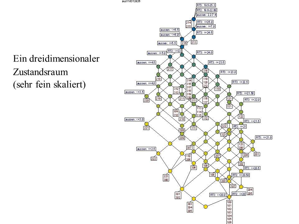 Ein dreidimensionaler Zustandsraum (sehr fein skaliert)