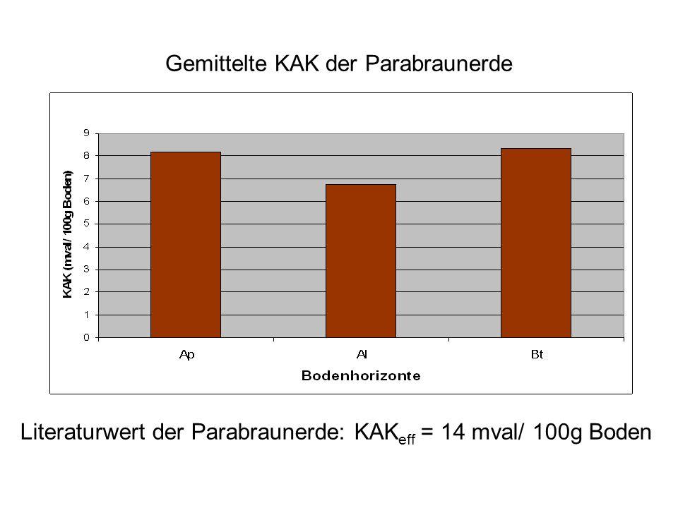 Gemittelte KAK der Parabraunerde Literaturwert der Parabraunerde: KAK eff = 14 mval/ 100g Boden