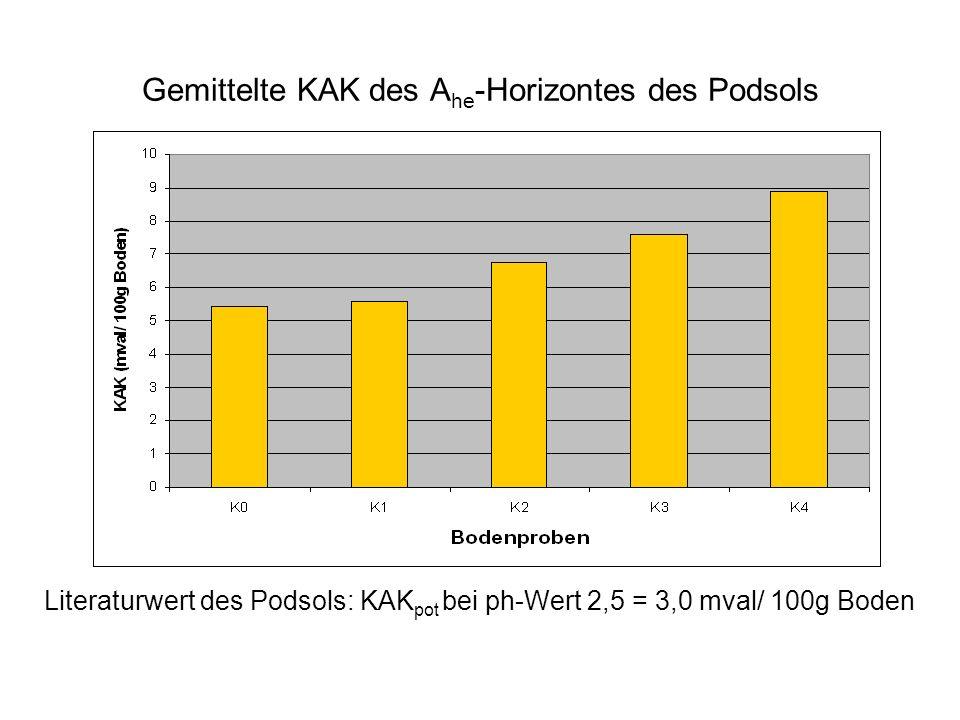 Gemittelte KAK des A he -Horizontes des Podsols Literaturwert des Podsols: KAK pot bei ph-Wert 2,5 = 3,0 mval/ 100g Boden