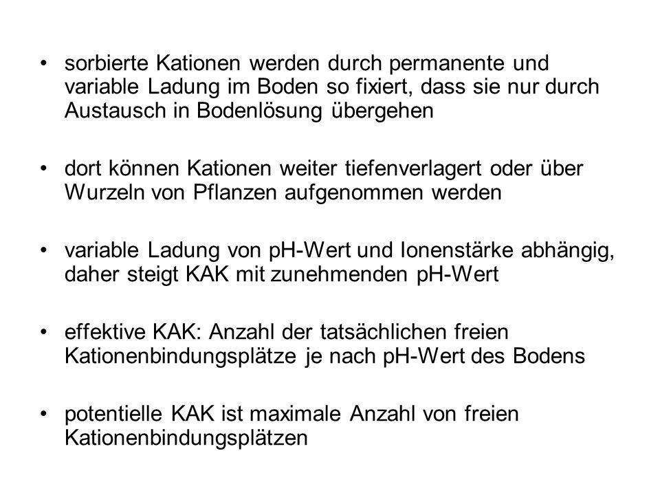 KAK von Podsol (von K1-K4 aufgekalkt)
