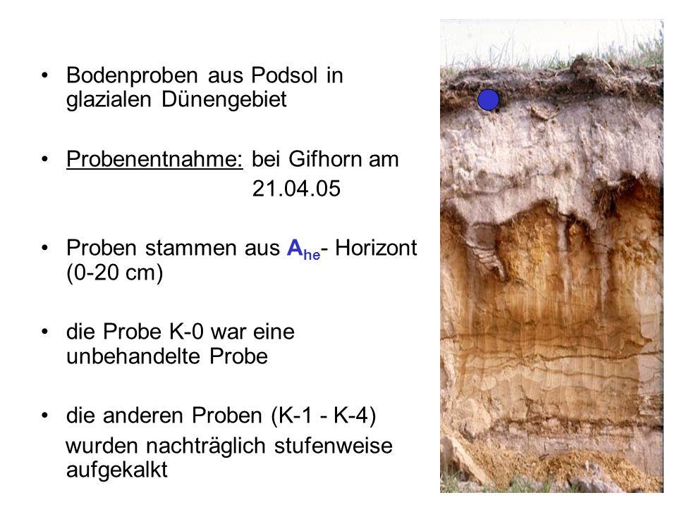 Bodenproben aus Podsol in glazialen Dünengebiet Probenentnahme: bei Gifhorn am 21.04.05 Proben stammen aus A he - Horizont (0-20 cm) die Probe K-0 war