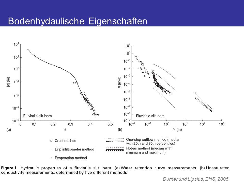 Wasserspannung (pF) Wassergehalt (cm³/cm³) 0 123 45 0.0 0.1 0.2 0.3 0.4 0.5 Van Genuchten RETC ( ) 0.0 0.1 0.2 0.3 0.4 0.5 Brooks & Corey, 1964 Van Genuchten, 1980