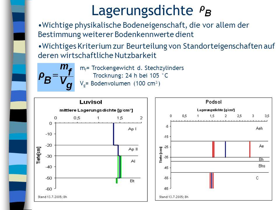 Lagerungsdichte Stand 13.7.2005; 8h / Wichtige physikalische Bodeneigenschaft, die vor allem der Bestimmung weiterer Bodenkennwerte dient Wichtiges Kr