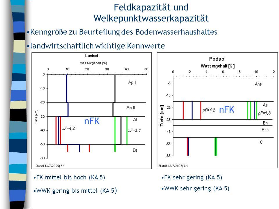 Feldkapazität und Welkepunktwasserkapazität FK mittel bis hoch (KA 5) WWK gering bis mittel (KA 5 ) Kenngröße zu Beurteilung des Bodenwasserhaushaltes
