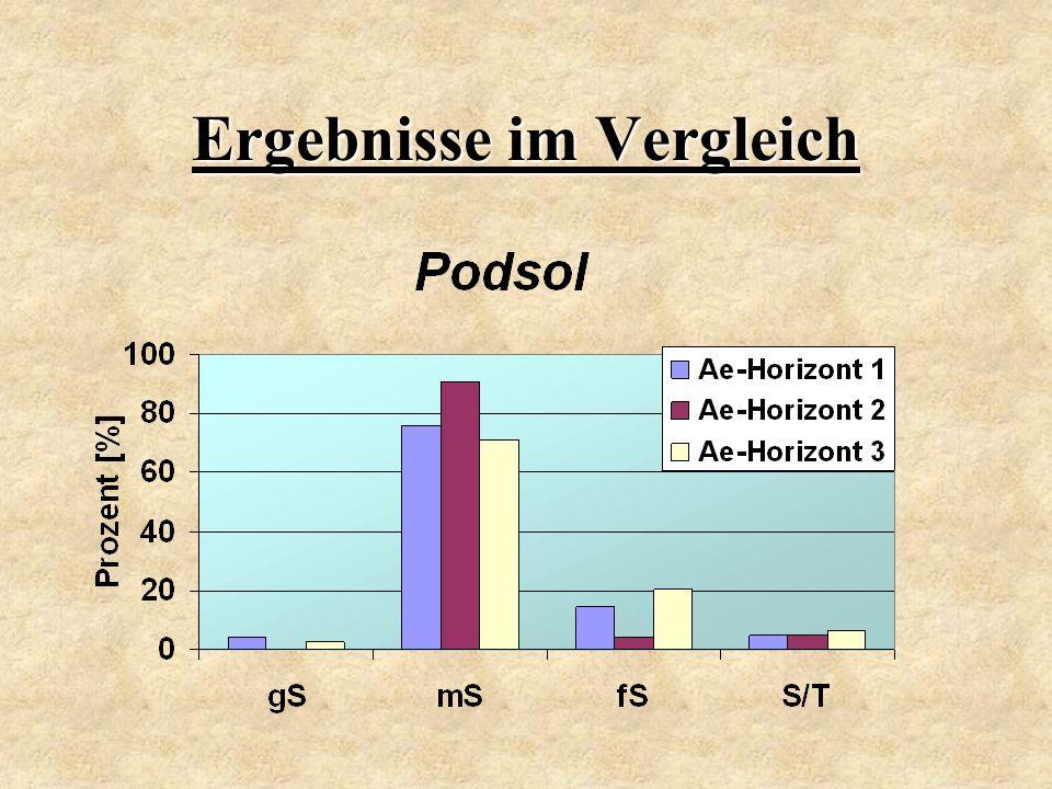 Ergebnisse im Vergleich
